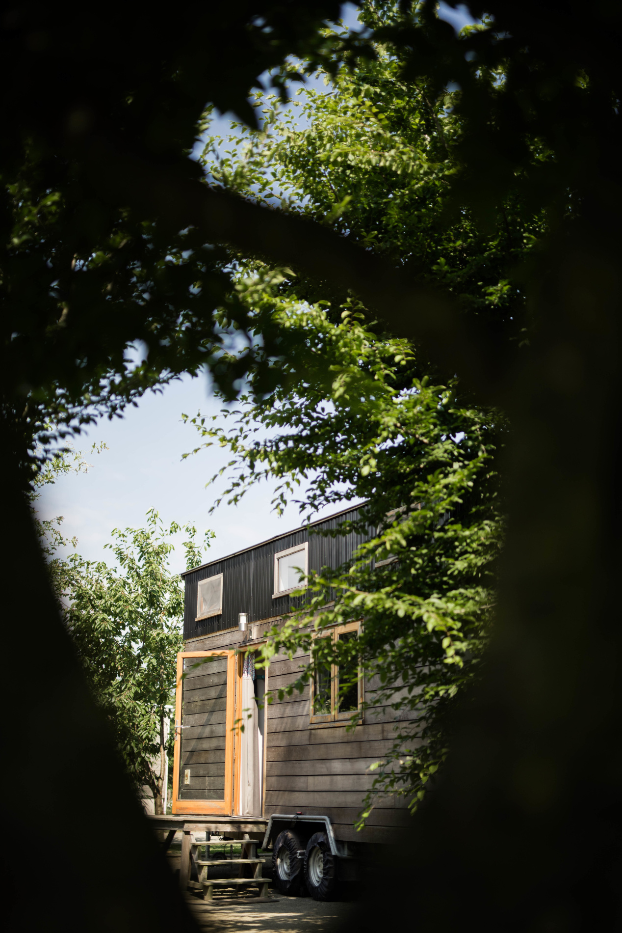 Tiny House en pleine nature